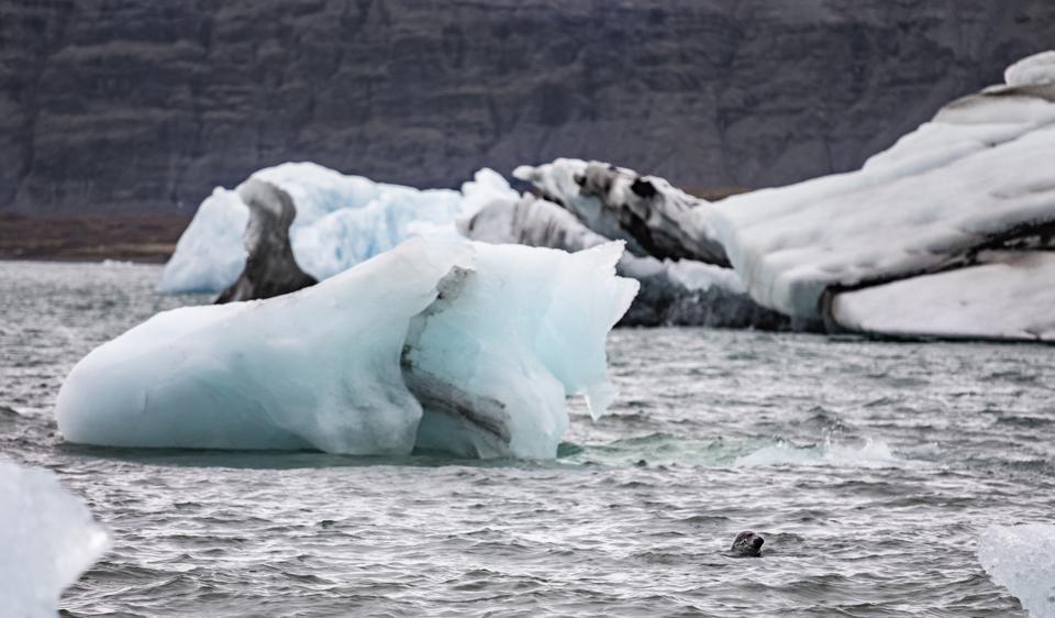 Iceburg in Jokulsarlon Lagoon