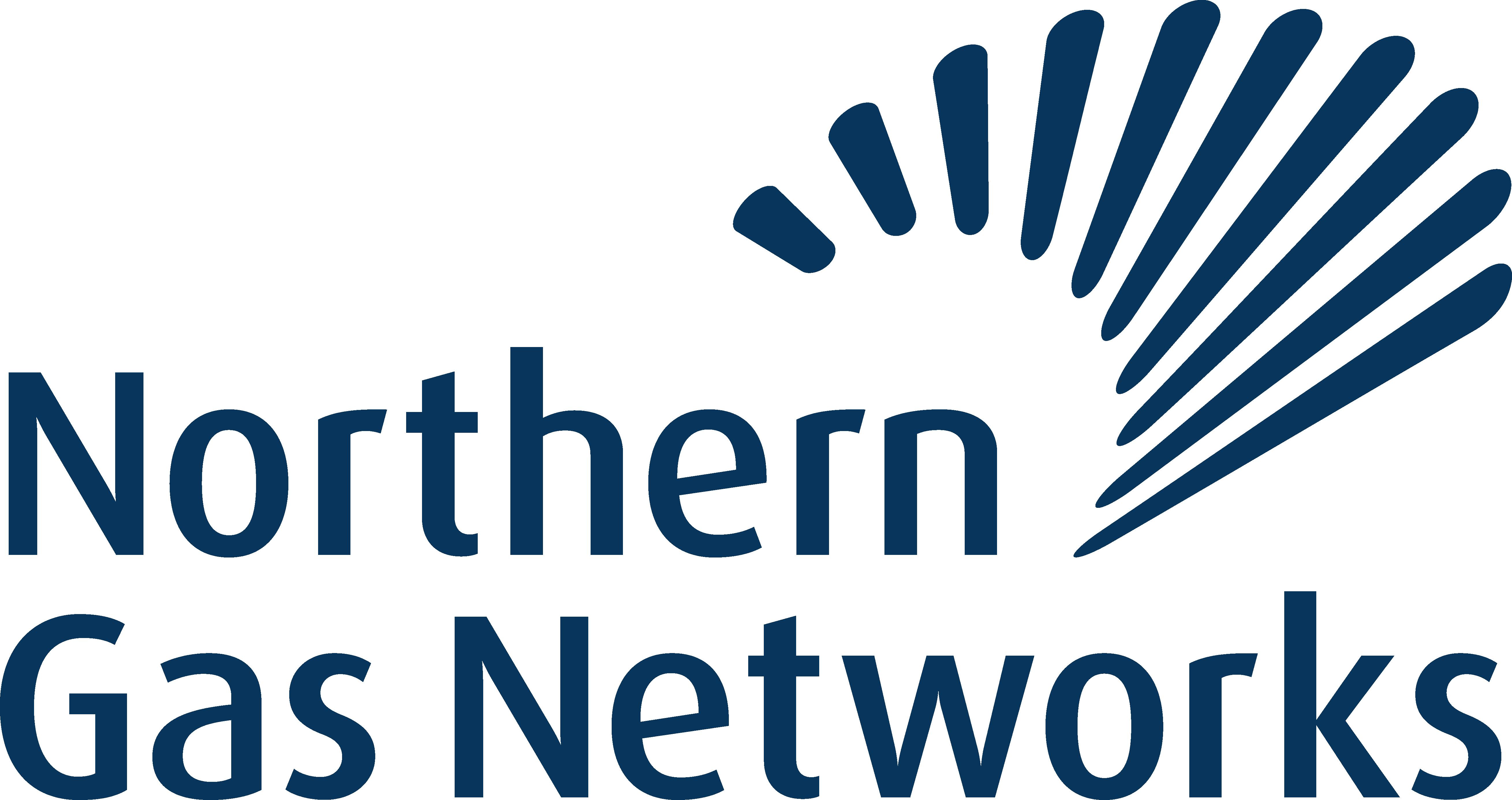 NGN Logo Blue