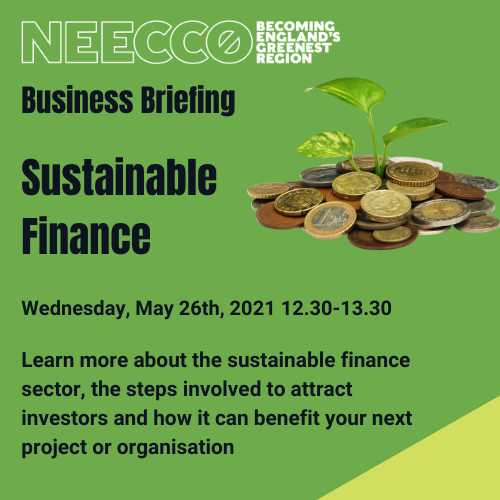 NEECCo Sustainable Finance event 26th May 2021
