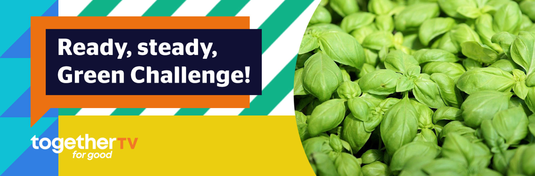 Ready, Steady, Green Challenge
